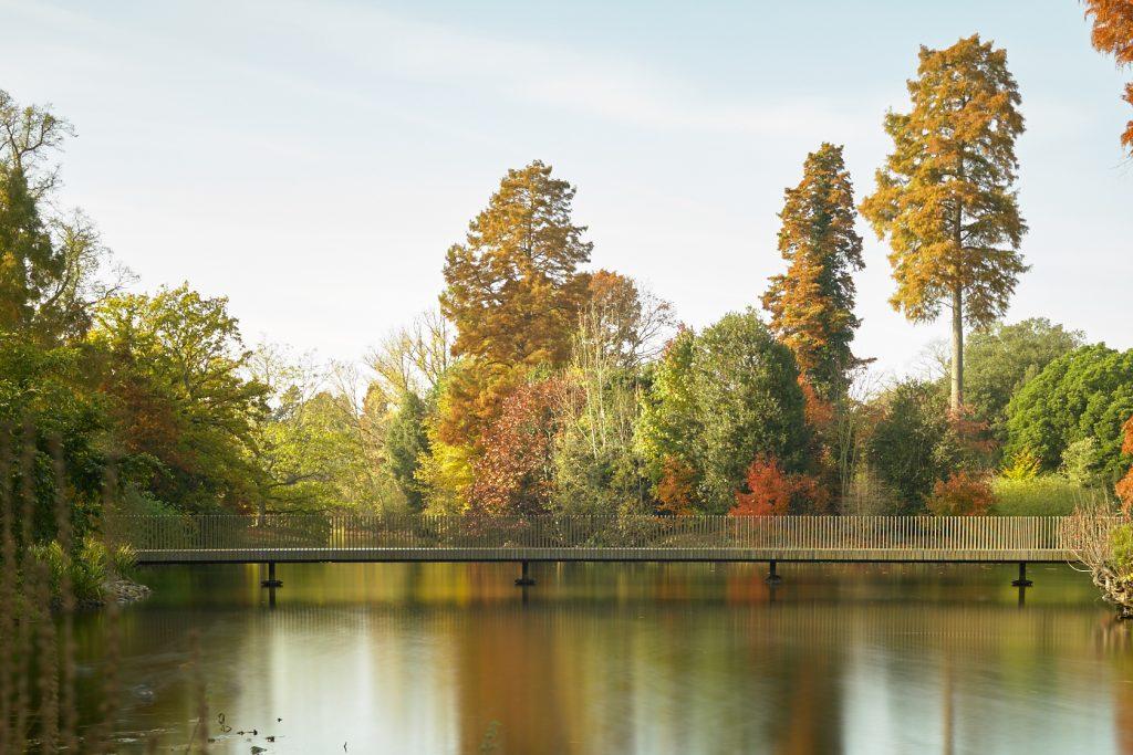 Kew, fall